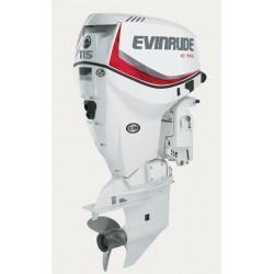 Evinrude E-TEC V4